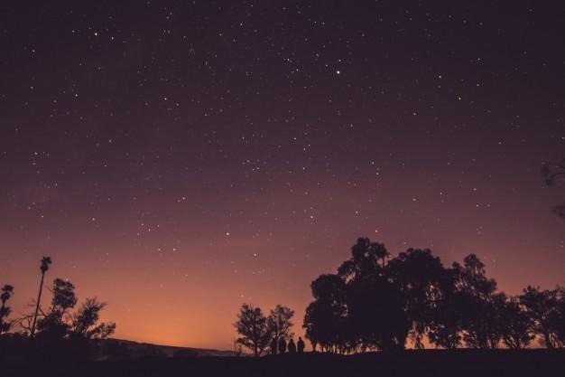Ver las estrellas espectaculares al hacer turismo en nueva Zelanda