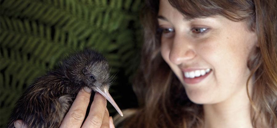 Chica con kiwi - estudiar inglés en Nueva Zelanda